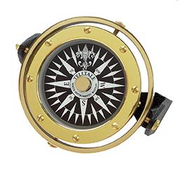 TellTale Compass
