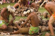 coconut husking (1)