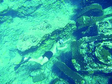 8. Seeaddler Wreck