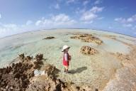 06.reef walk