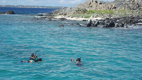 Snorkeling at Il Forche