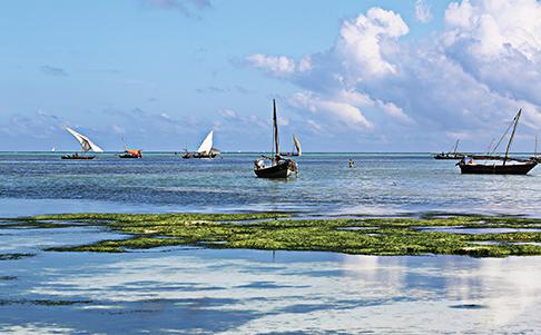 Indian ocean view, Nungwi Beach, Zanzibar, Tanzania, Africa