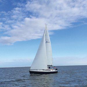 Delphia 40 sailing