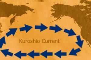 KuroshioCurrentDiagram