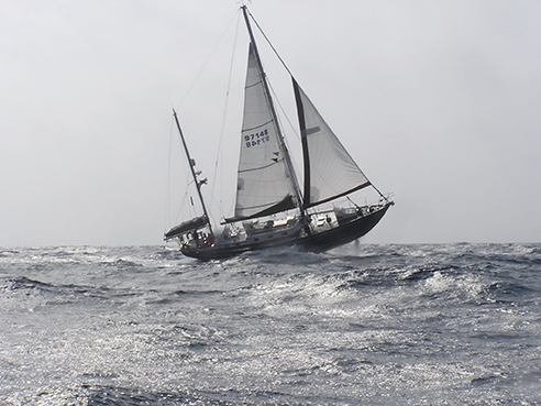 how to take down jib sail