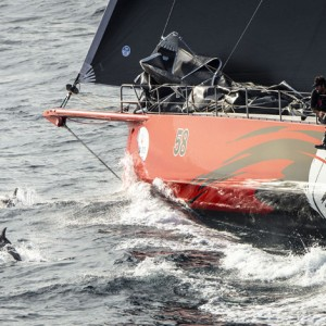 58, COMANCHE (USA), Sail No: 12358, Design: Verdier Yacht Design & Vplp, Owner: Jim Clark Kristy Hinze , Skipper: Ken Read
