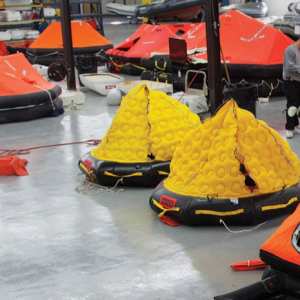 LifeRaft Capture