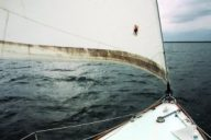 mildewed_sail2