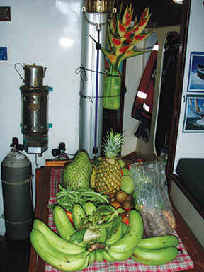Dominicas produce: plantains, cinnamon, cocoa, pineapple, soursop, manoes, green beans