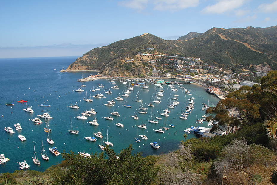 Aerial view of boats parked on Catalina Island California