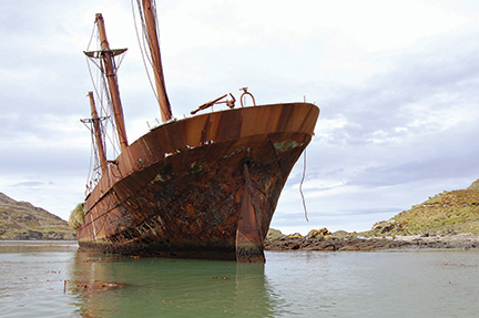 The wreck of the Bayard, one of many victims of South Georgia's weather