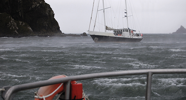 80 knots of wind in Elsehul. Kiwi Roa used her Rocna everywhere and never dragged.