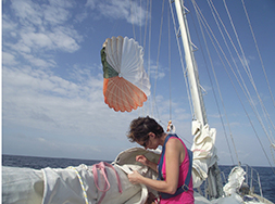 Repairing sails at sea is easy on calm days