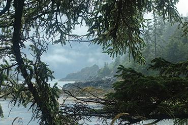 Haida Gwaii scenery