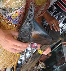 Cassowary weapon in Jayapura