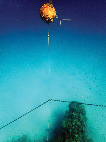 Using a pearl float to hold the anchor chain off the bottom and above the coral heads (PLACE NEXT TO SIDEBAR)