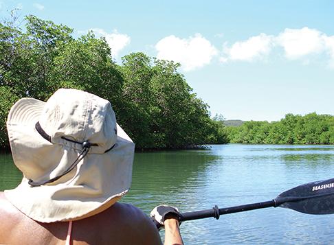 Kayaking Puerto Ferro