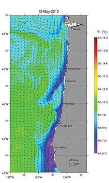 A 48-hour coastal current forecast along the Oregon coast. This is perhaps the best data of this type available. See www.nanoos.org/nvs/nvs.php?section=NVS-Forecasts-OSU-ROMS.