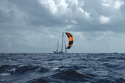 Excitement grows when passing the yacht E Capoe on the open ocean