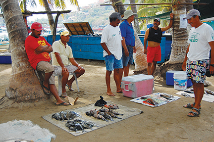 The open air fish market at Playa Principal in Zihuatanejo