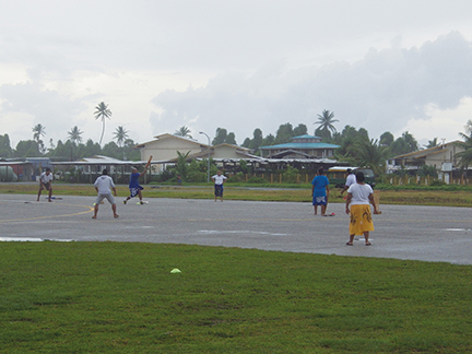 Cricket on the runway