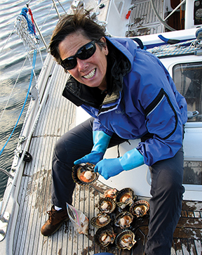 Cleaning scallops in Pt Pegasus on Stewart Island
