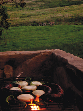 Braai at a South African game park with Zebra in the distance