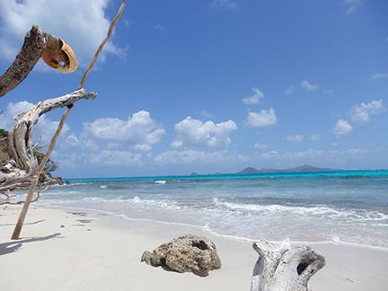 Baradel Island, Tobago Cays, looking at Union Island