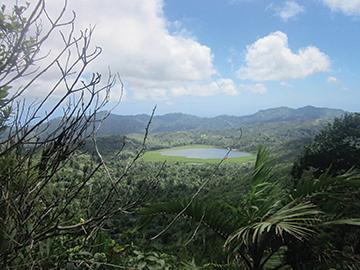 Lush landscape of Grenada